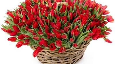 Felicitari-de-8-martie--Ponta-si-Iohannis-dau-tonul-cu-urari-virtuale--Video-